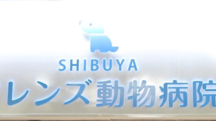(東京都)『渋谷駅』新南口より徒歩2分 SHIBUYAフレンズ動物病院の求人情報