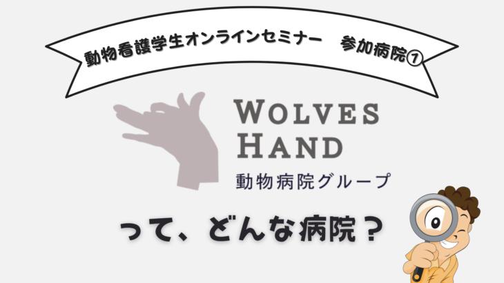 10/3(日)19:30 動物看護学生オンラインセミナー ご参加企業 WOLVESHand動物病院グループってどんな病院!?